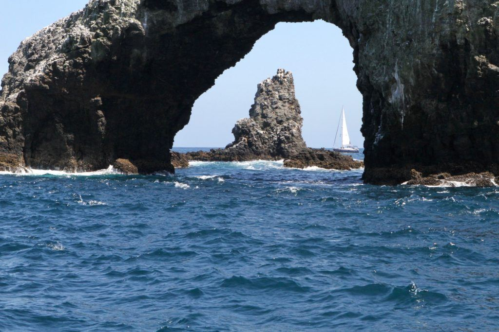 Channel Island NP- Anacapa Island